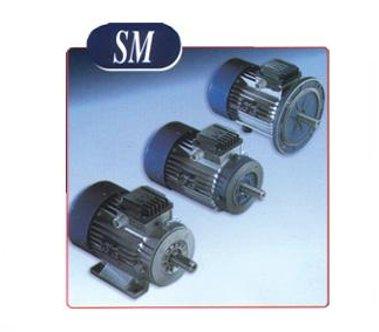MGM Brake Motor SM